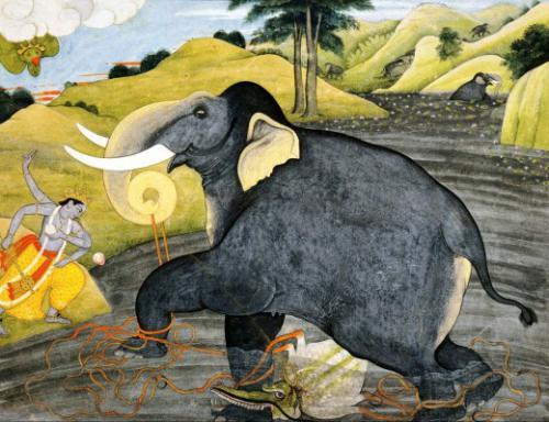 Il Re e gli elefanti